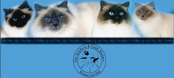 The Southern & South Western Birman Cat Club